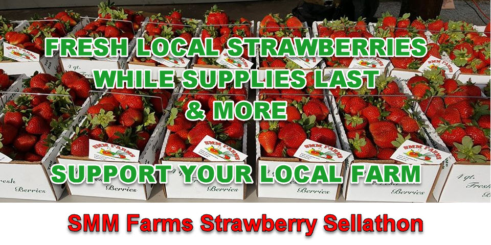 SMM Farms Strawberry Sellathon